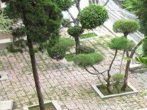 View taman yang asri
